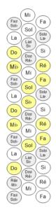 Clavier Droit Accordéon Notes